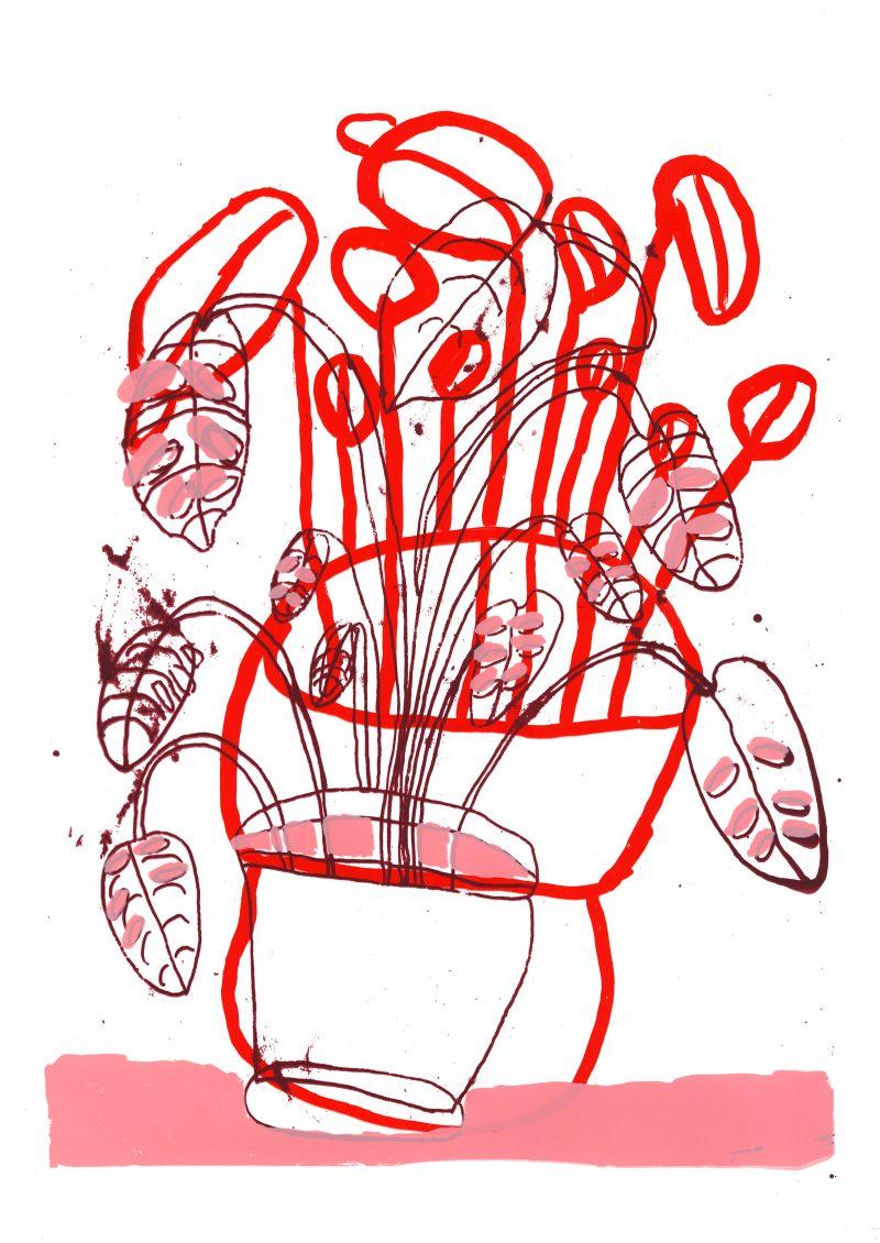 Pot Plant 7