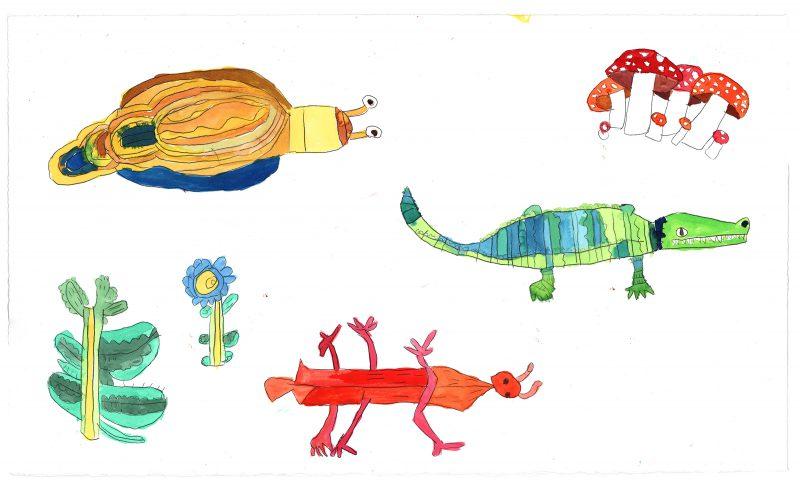 Mushroom, Slug, Insect, Crocodile
