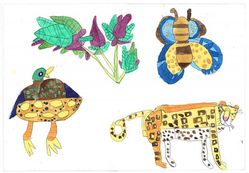 Plant, Duck, Butterfly, Leopard