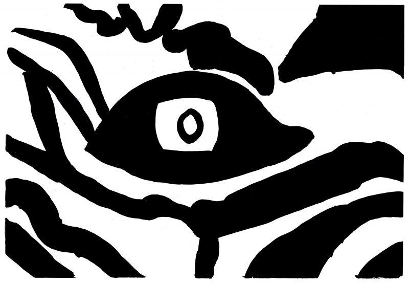 Zebra Eye Deco Crossing