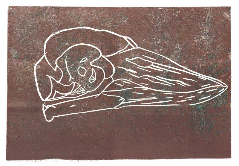Bird Skull 3