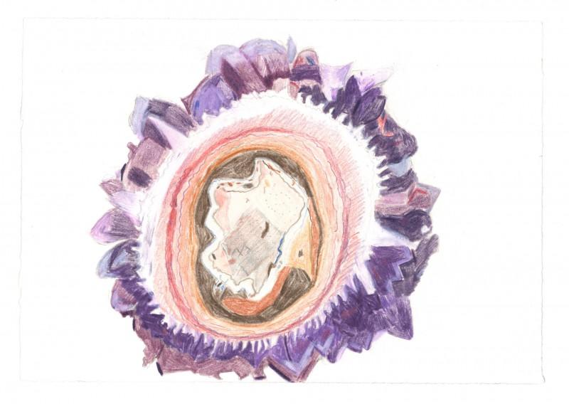Amethyst: The Queen of Purple Minerals