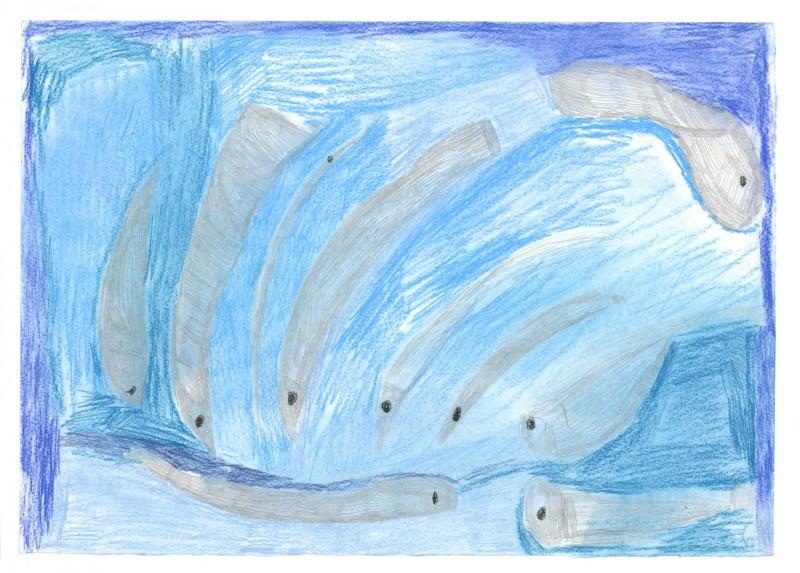 10 Fish in the Sea