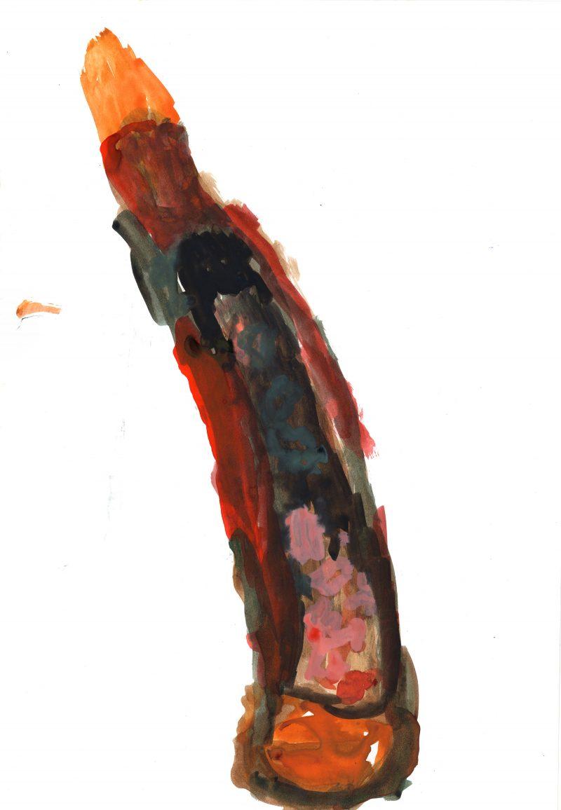 Multicoloured Cactus 2