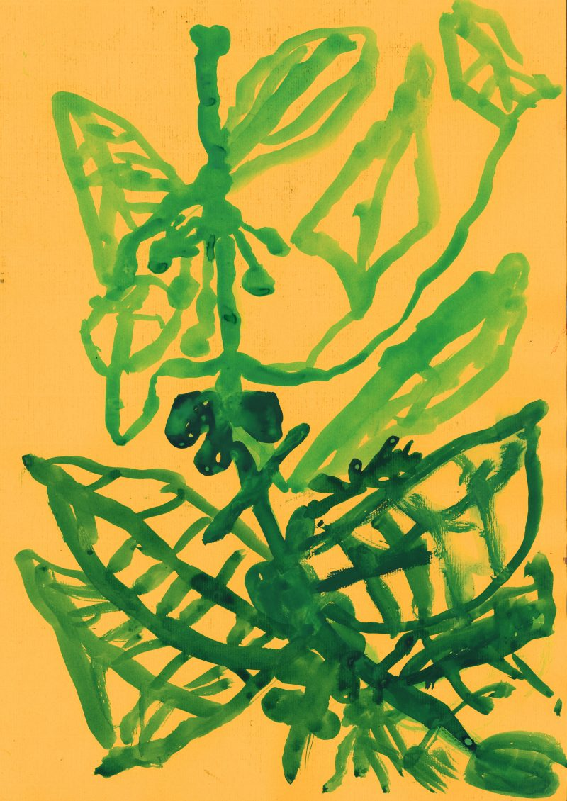 Leaf Forms in Green