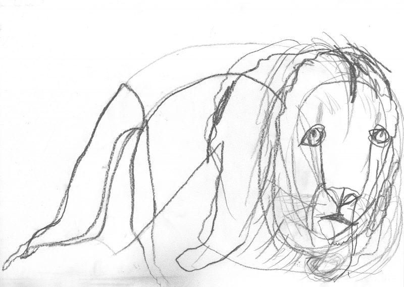 Slumped Lion