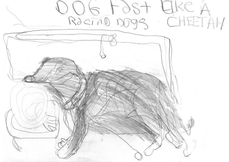 Dog Fast