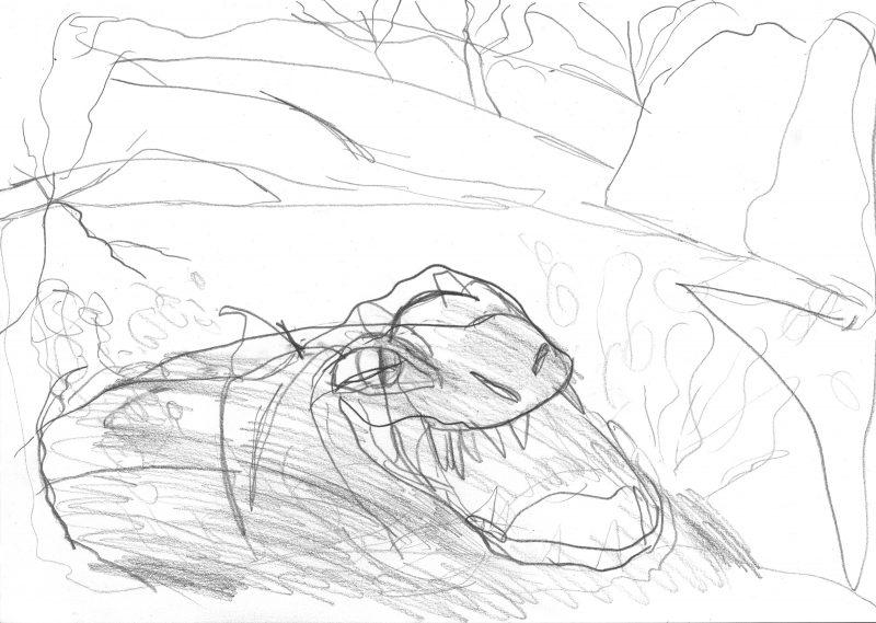 Lunging Crocodile