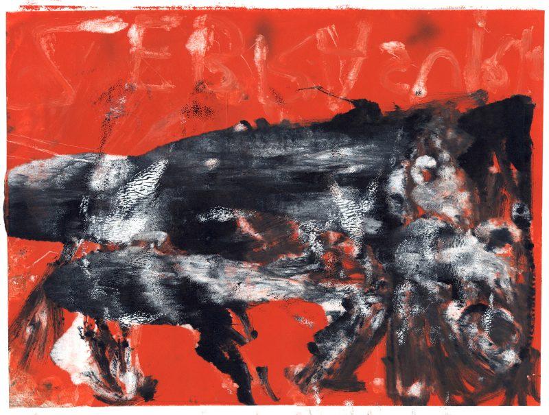 Husky on Red