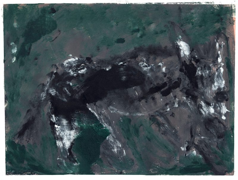 Hyena on Green